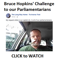 Bruce Hopkins Challenge to MPs - small